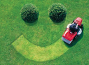 Property Preservation Lawn Maintenance